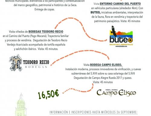 """""""La Seca, copa en mano: Tiempo de vendimia en la cuna del verdejo"""" Circuito de Viñedo y Bodega"""