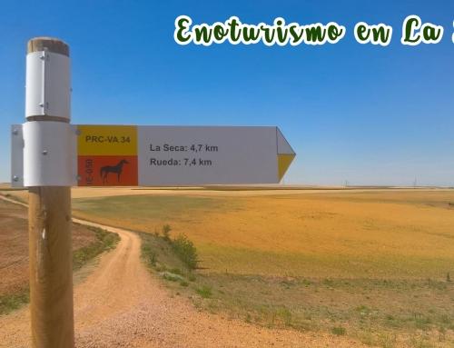 La Ruta del Vino de Rueda en vendimia : Dossier de actividades
