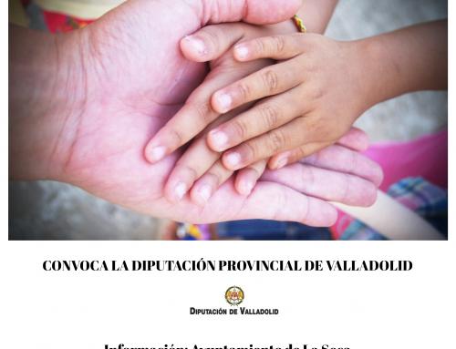 CONVOCATORIA DE AYUDAS DE CARÁCTER INDIVIDUAL PARA FAVORECER LA AUTONOMÍA PERSONAL DE PERSONAS DEPENDIENTES, AÑO 2020