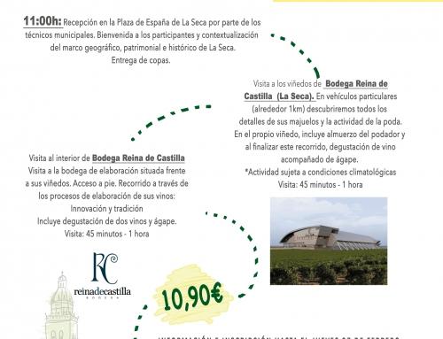 El Ayuntamiento de La Seca pospone su circuito de viñedo y bodega al sábado 29 de febrero
