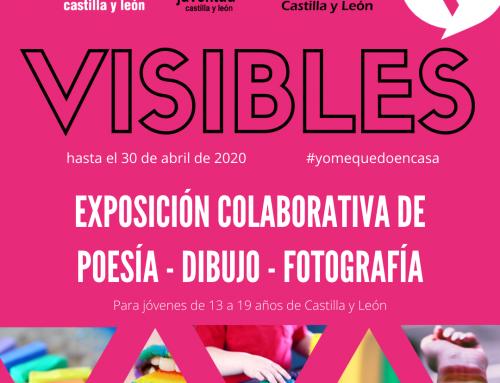 VISIBLES, exposición colaborativa con Fundación Triángulo CyL