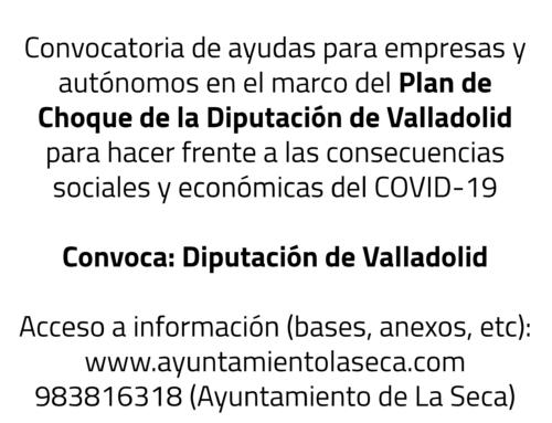 Convocatoria de ayudas para empresas y autónomos en el marco del Plan de Choque de la Diputación de Valladolid para hacer frente a las consecuencias sociales y económicas del COVID-19