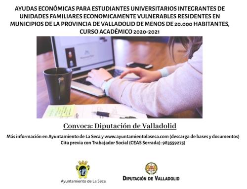 CONVOCATORIA DE AYUDAS ECONÓMICAS PARA ESTUDIANTES UNIVERSITARIOS. CURSO ACADÉMICO 2020-2021